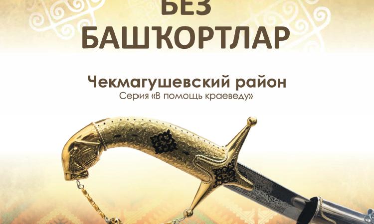 Чекмагушевский район